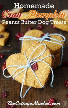 Homemade cranberry pumpkin peanut butter dog treats! The perfect #Thanksgiving treat for pups.