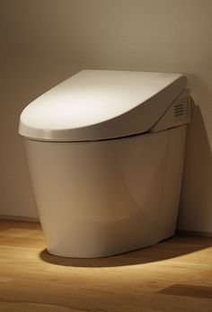 ... japanese toilets with the seat warmer, night light, bidet, music, etc.