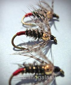 Fly Fishing Tips. Follow us!
