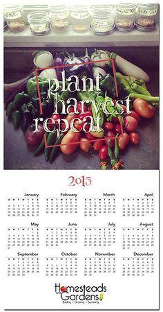 Lindsey Bennett | Design Calendar