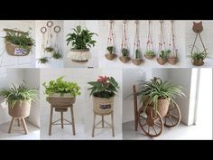 Sisal, Jute Crafts, Flower Pots, Flowers, Potted Plants, Garden Pots, Reuse, Lana, Stuff To Do