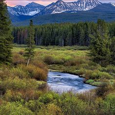 Travel to Montana's High Plains where you will find praries, badlands and buttes.