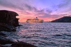 Nature, Travel, Cartagena, Naturaleza, Viajes, Destinations, Traveling, Trips, Nature Illustration
