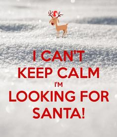 Poster size Personalised Posters with a 'I CAN'T KEEP CALM I'M LOOKING FOR SANTA! Perfect wall-art for inspiring positivity and calm. Three sizes available, posters and adhesive wall posters. Keep Calm Posters, Keep Calm Quotes, Me Quotes, Prayer Quotes, Keep Calm Baby, Cant Keep Calm, Christmas Poems, Christmas Time, Christmas Wreaths