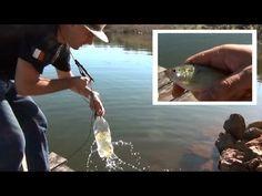 Como pescar lambari com garrafa PET