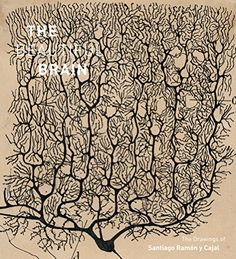 Beautiful Brain: The Drawings of Santiago Ramon y Cajal b... https://smile.amazon.com/dp/1419722271/ref=cm_sw_r_pi_dp_x_c.LIybW1VEBG2