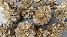 Vybělené šišky využijete na podzimní dekorace
