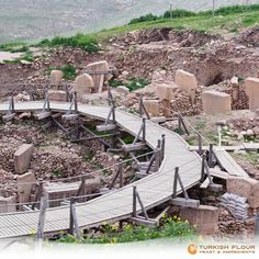 Among the stone age temples, wheat harvesting started almost 12.000 years ago. Let the history of wheat production in Turkey speak for itself... #Gobeklitepe