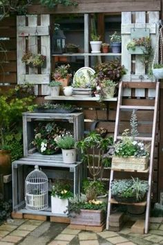 A twist on the idea of vertical gardens — Shelved Gardens. They are kind of like vertical gardens (in that the point is to fill a vertical space with plants) but different. Vintage Garden Decor, Diy Garden Decor, Garden Decorations, Small Vintage Garden Ideas, Vintage Gardening, Wall Decorations, Halloween Decorations, Vertical Gardens, Small Gardens