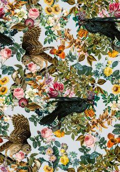 FLORAL AND BIRDS VI by Burcu Korkmazyurek