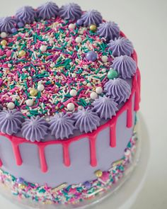 Oh hey Friday! Glad you decided to show up! Hope everyone's weekend is as bright and happy as the sprinkles smothering… Bright Birthday Cakes, 12th Birthday Cake, Birthday Cake Girls, Crazy Cakes, Fancy Cakes, Cake Decorating Tips, Cookie Decorating, Gorgeous Cakes, Amazing Cakes