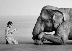 Boy reading to elephant