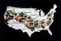 Plates shaped like all fifty states.