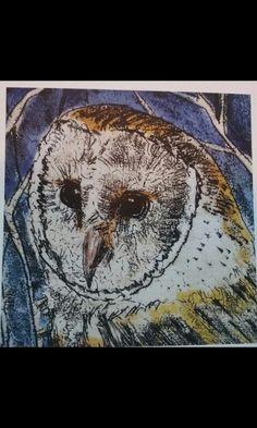 Owl Art, Moth, Insects, Animals, Animales, Animaux, Animal, Animais