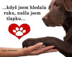 Fotka uživatele Happy blahopřání. Dog Quotes Love, True Friends, True Words, Dear Friend, Animals And Pets, Favorite Quotes, Cute Dogs, Poems, Writing