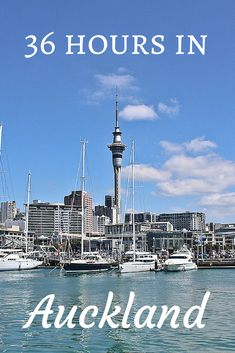 Heading to Auckland, New Zealand? Check out this 36 hour itinerary for food, hikes, views, and more!