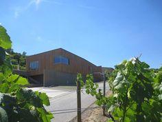 """Architectour Musel I 16: #Ahn – Domaine Viticole Konsbruck  Le nouveau domaine viticole """"Winery Jeff Konsbrück"""" comprend une cave viticole et un bar à vin. Le site offre aux visiteurs une vue impressionnante sur les vignobles d'Ahn.  Architectes: Witry & Witry architecture SA. Ingénieurs-conseils: Theis Engineering, INCA Ingénieurs Conseils Associés sàrl. Photographe(s) :witry & witry"""