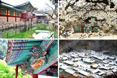Samgwangsa temple in Busan