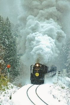 Snowy Express - Click for More...
