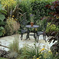 Quiet courtyard (I have the bistro set!.. next..)  This quiet courtyard is screened by a laurel hedge, foxglove tree (Paulownia tomentosa), New Zealand flax (Phormium tenax), diamond grass, heliopsis and Cercis canadensis 'Forest Pansy'.