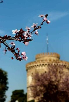 The Secret Greece is a cultural portal showcasing articles for Greece, suggesting destinations, gastronomy, history, experiences and many more. Greece in all Thessaloniki, One And Only, Homeland, Ghosts, Mad, Heaven, Earth, City, Places