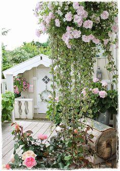 Garden and Angels...