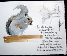 Sketching in Nature~ Cathy Johnson  http://pinterest.com/pin/502855114613880178/repin/
