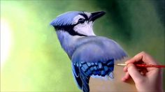 Blue Jay on the Snowy branch - Acrylic painting / Homemade Illustration Acrylic Painting On Paper, Acrylic Painting Lessons, Simple Acrylic Paintings, Acrylic Painting Tutorials, Painting Videos, Painting Process, Acrylic Art, Knife Painting, Pastel Watercolor