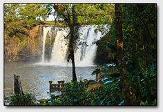 Canecutter Way Regional, Attraction, Dreaming Of You, Waterfall, Beautiful Places, Australia, Outdoor, Outdoors, Waterfalls