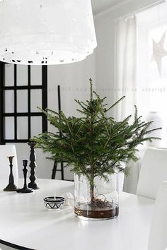 Christmas is among the biggest celebrations and happy occasions for lots of people around the world. Christmas is among Wall Christmas Tree, Christmas Bathroom Decor, Little Christmas Trees, Noel Christmas, Christmas And New Year, Winter Christmas, Minimal Christmas, Natural Christmas, Simple Christmas