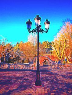 Plaza del Coso.