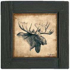 Moose 4-piece Framed Coaster Set For $16.99