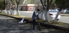 Azcapotzalco avanza con mantenimiento de zonas verdes