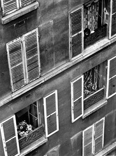 black and white, andre kertesz, and paris image