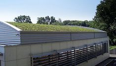 Green Roof Installation System for flat and sloped roofs Concrete Slab Patio, Modern Brick House, Sedum Roof, Living Roofs, Roof Installation, Roof Plan, Rooftop Garden, Garden Projects, Conservatory