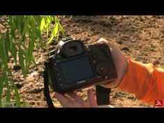 Canon EOS 5D Mark III Hands-on Preview + Sample