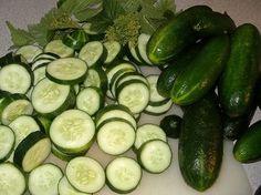 Eet veel komkommers tijdens het komkommerdieet! Een dieet waar je snel gewicht mee kunt verliezen is het komkommerdieet. Je kunt het komkommerdieet beter z