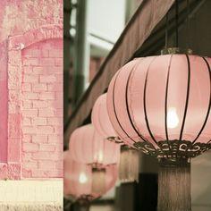 Very pretty pale pink lanterns. Pink Love, Pretty In Pink, Blush Pink, Pink Silk, Pretty Asian, Perfect Pink, Pink Fabric, Mauve, Pink Lanterns