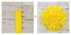 Tissue paper flowers - Fringe