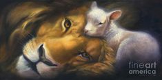 lion and lamb 4