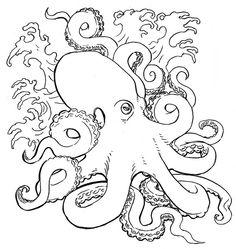 B / W-Kraken-Tätowierungsskizze, - # Octopus Sketch, Octopus Drawing, Octopus Tattoo Design, Octopus Tattoos, Octopus Art, Tattoo Designs, Octopus Pictures, Squid Tattoo, Wall Drawing