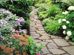 Encourage visitors to stroll by planting interesting flowers, foliage and fragrance along the path.