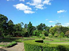 City Botanic Gardens , Brisbane, QLD, Brisbane 2007 Summer with KMU friends