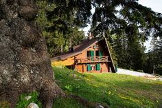 Chalet Alpinka Cerklje na Gorenjskem Chalet Alpinka offers elegant Alpine-style chalets in the untouched nature of the Julian Alps, with direct access to hiking trails and the slopes of the Krvavec Ski Area.  Bicycle and ski equipment rental are offered.