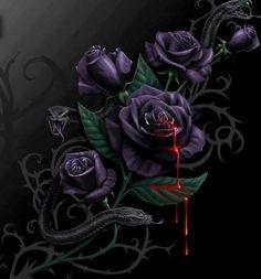 サクラ Sakura im Herbstlichen Herzflimmern Black Rose Flower, Black Flowers, Red Roses, Black Roses, Dark Gothic Art, Dark Fantasy Art, Gothic Artwork, Dark Art, Bleeding Rose