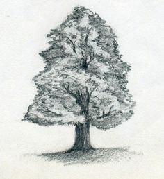 A site full of drawing techniques.