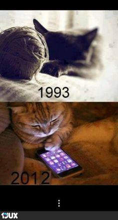 Früher und heute! ... auch Katzen werden Moderner