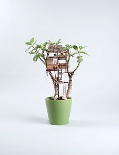 Miniature Treehouse Sculptures Built Around... | Colossal