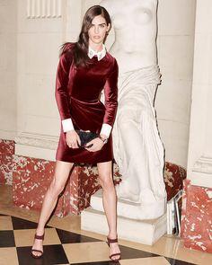 Ted Baker Cheryll Embellished-Collar Velvet Dress