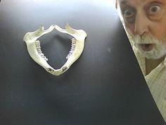 """SENSAZIONALE SCOPERTA SCIENTIFICA !!!!! - Nella Gola dell'Indottuway in Africa è stato rinvenuto il primo osso vulvare,appartenuto,a quanto si suppone,ad un esemplare femmina della specie Homo sapiens godens.Come si può vedere distintamente dalla foto,tale reperto è munito di dentatura,e va così a far crollare quanto finora supposto sia dalla scienza ufficiale che da quanto declamato nel testo """"OSTERIA NUMERO VENTI"""". Via Riccardo Capineri"""